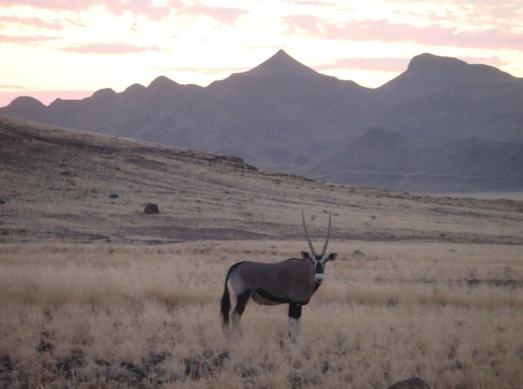 suedliches-afrika-namibia-mietwagen-rabatt